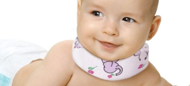 Как правильно выбрать воротник Шанца для новорожденных